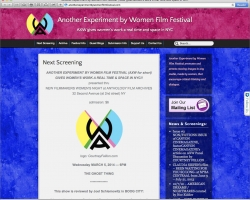 Another Experiment By Women Film Festival